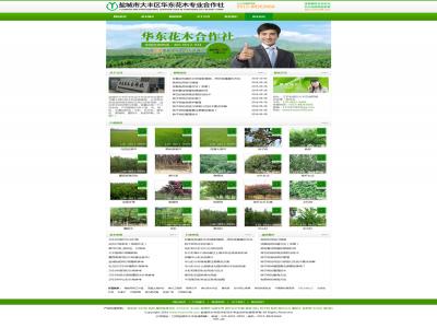 大丰华东花木huamu58.com