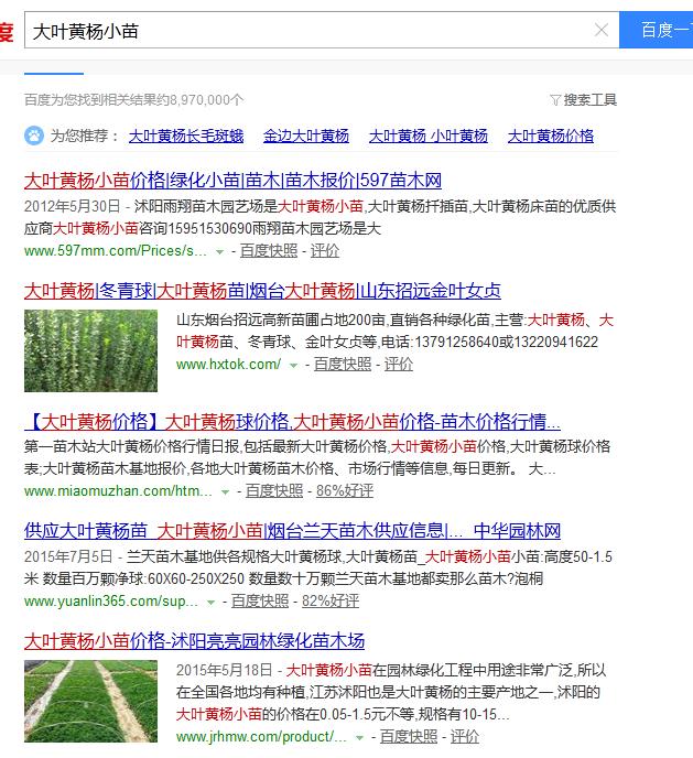 企业为什么要做网站优化(seo)